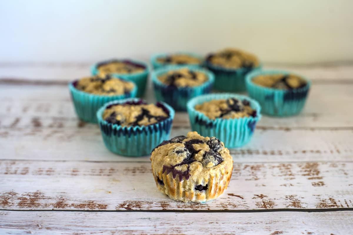 dog blueberry muffins