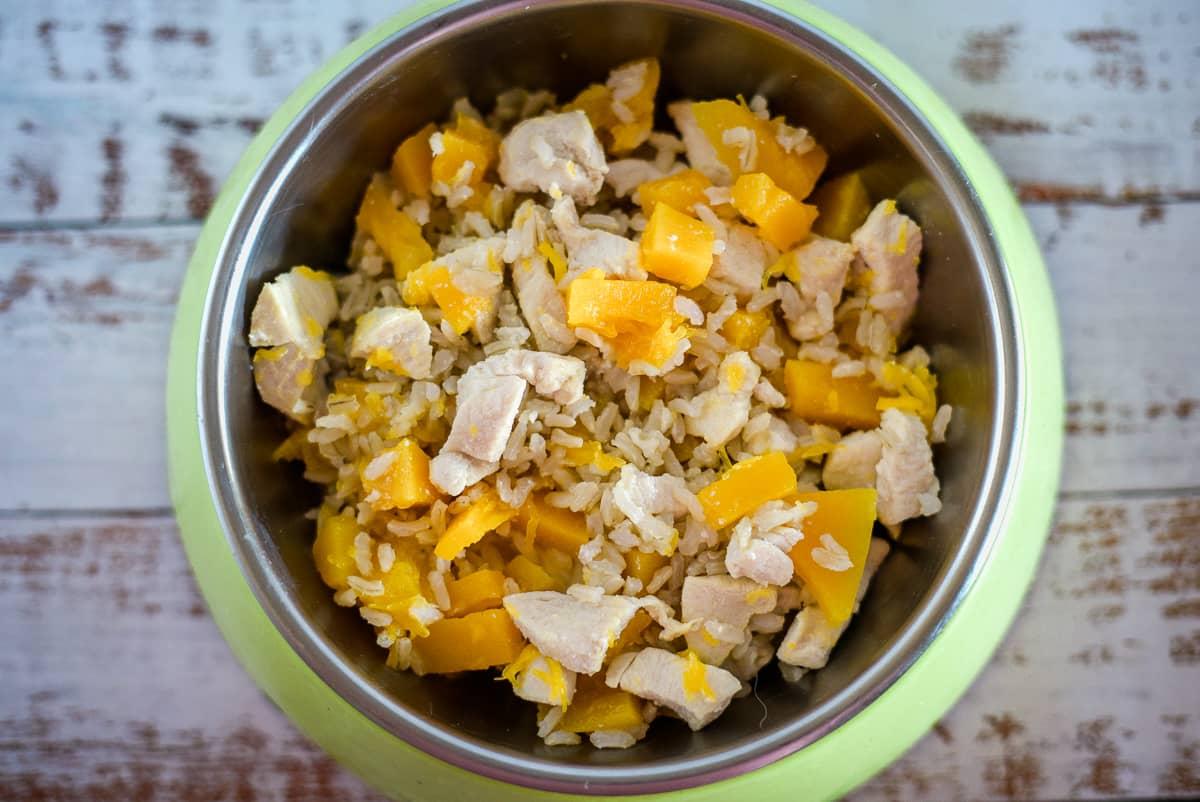 chicken pumpkin dog food