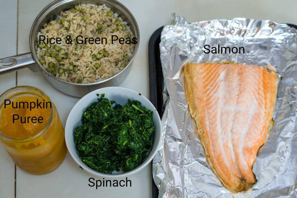 salmon dog food ingredients