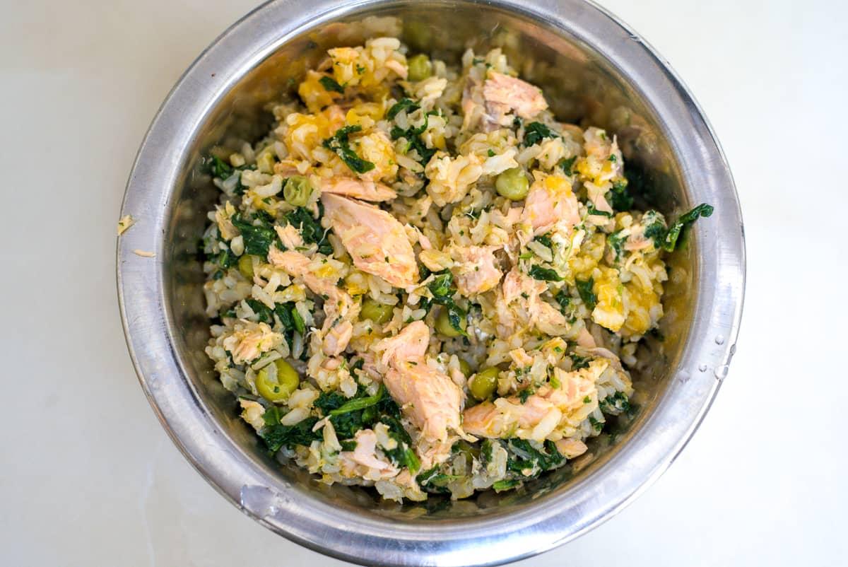 salmon dog food with rice